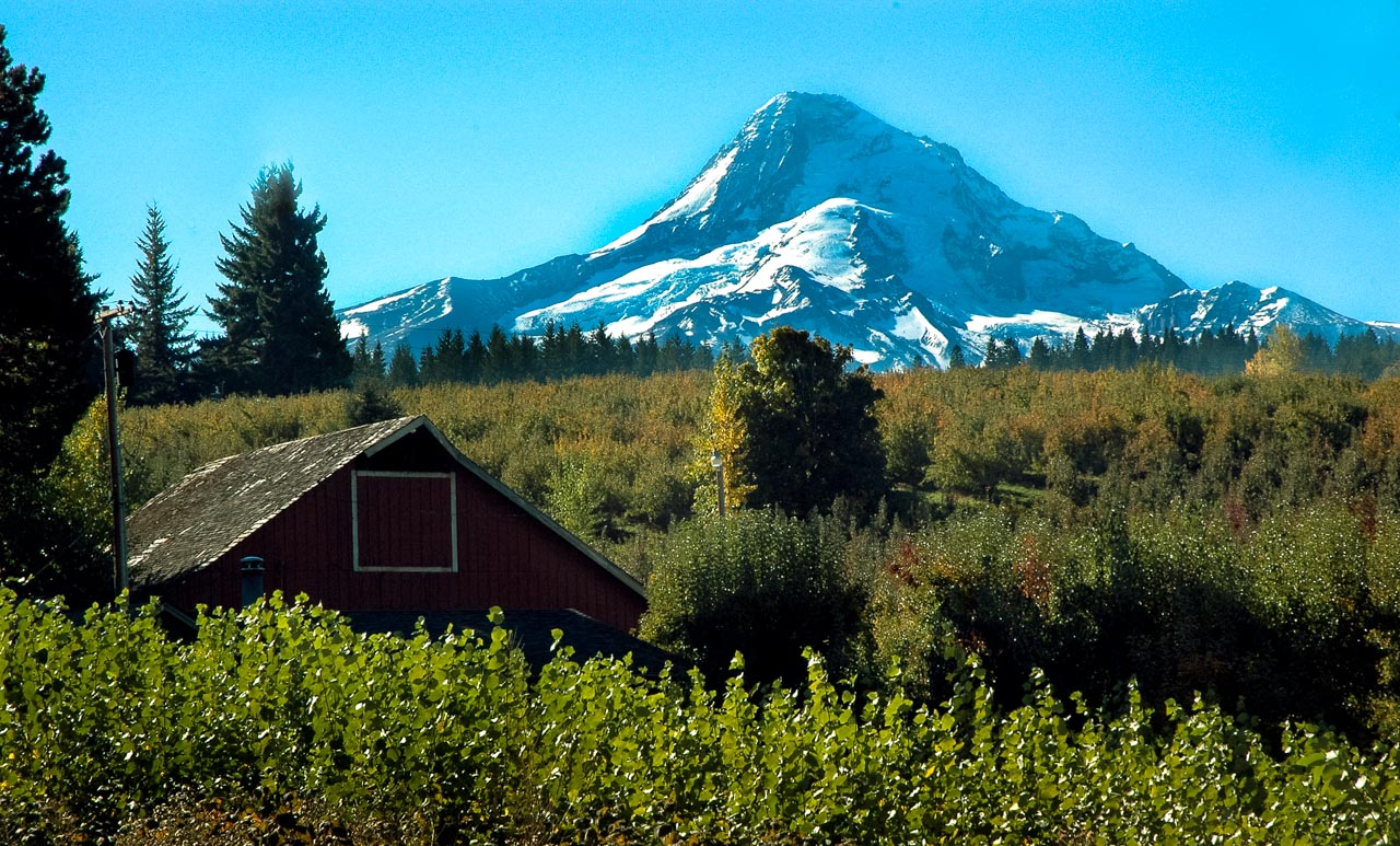 mt-hood-oregon-foto-julian-arnauda