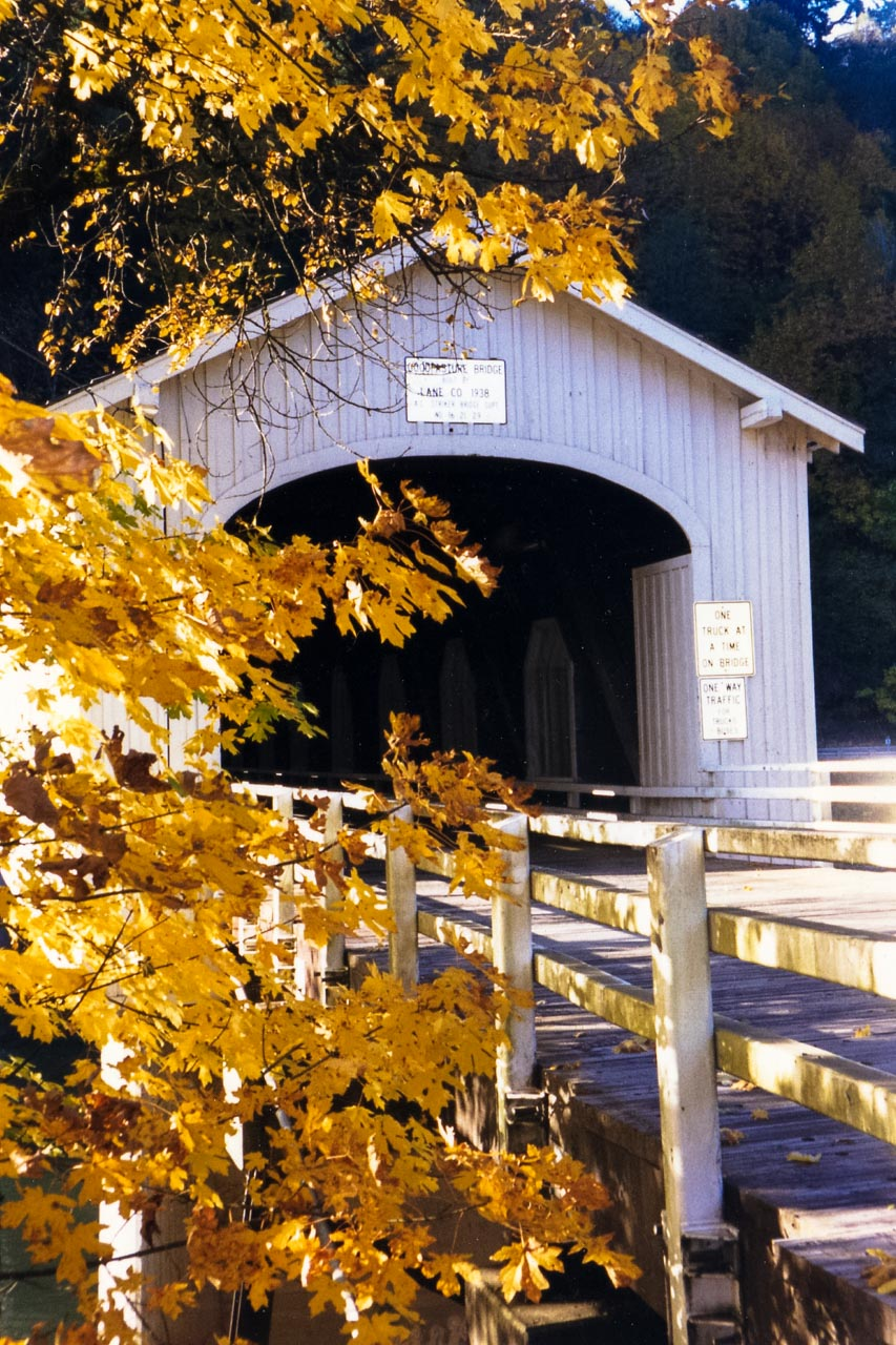 Covered Brigde in Oregon