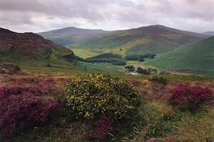 wicklow-mountains-2