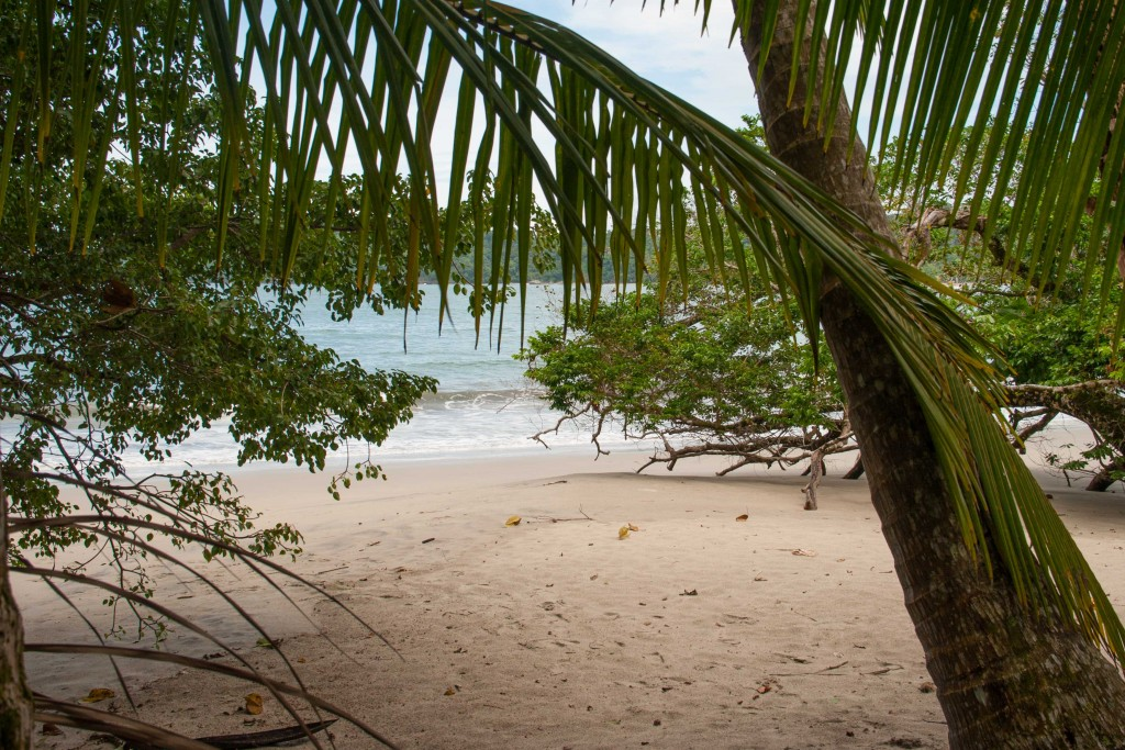 Costa Rica-strand-Manuel Antonio-Nationaal Park