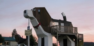 Dog Bark Park in Idaho