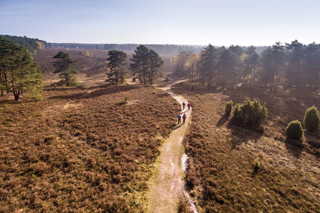trail-bos-1024-germany-duitsland