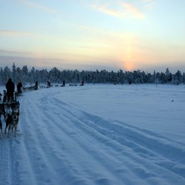 Winterse tocht in Fins Lapland