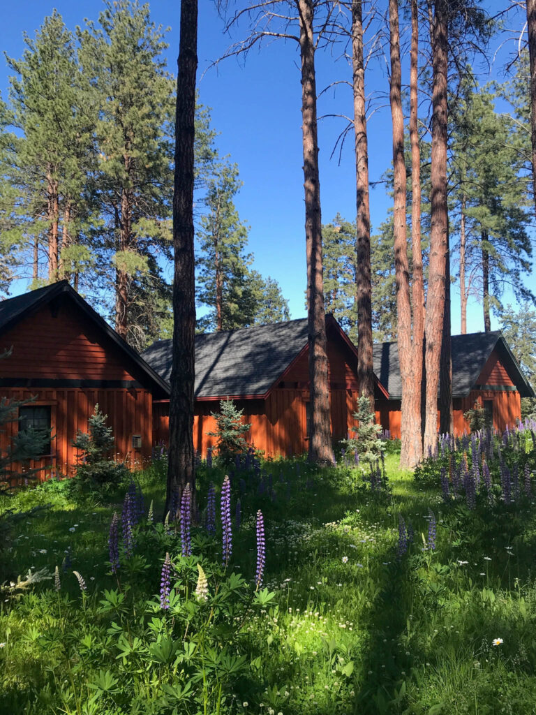 Five Pine Lodge in Sisters