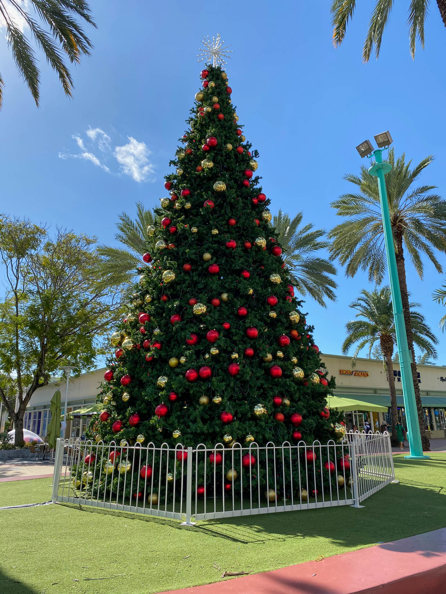 Kerstboom op Lincoln Road